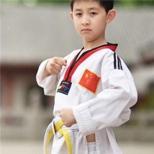 道艺跆拳道馆学员