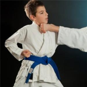 道艺跆拳道馆教学