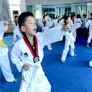 道艺跆拳道馆品牌