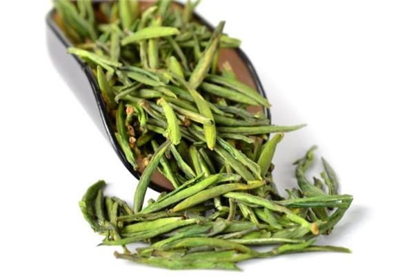 早春绿茶杯子