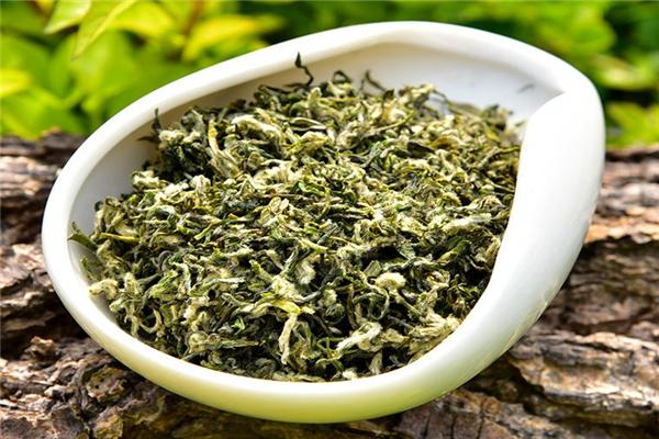 早春绿茶盆子