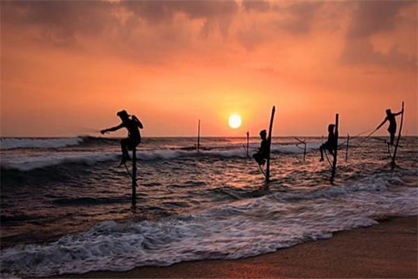 斯里兰卡摄影孤掉