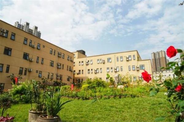 丹青美术学校美景