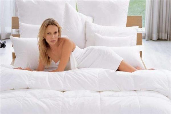 尚馳寢具床上枕芯