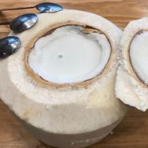 椰島季風椰子雞特色
