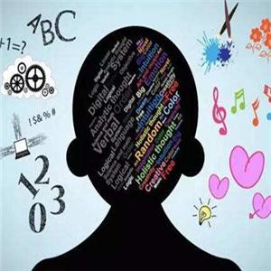 優的堡全腦開發黑色