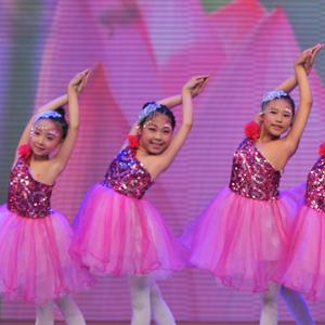 舞之韵艺术培训学校价格低