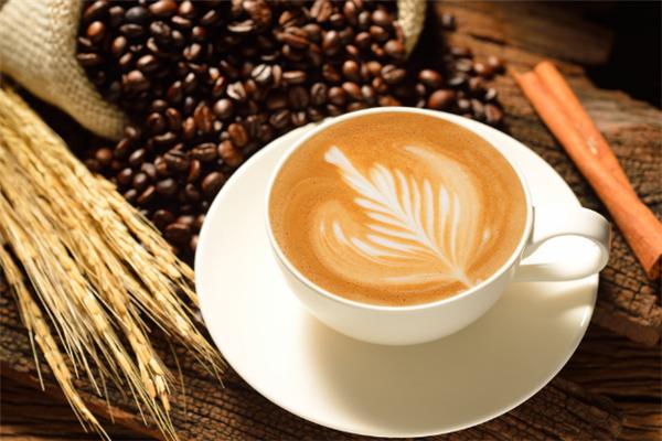 HABOCOFFEE哈波咖啡專業