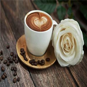 白月光咖啡館經典