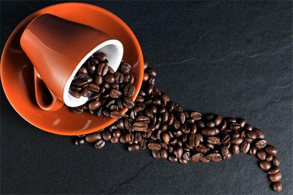 Gu貓Coffee宣傳