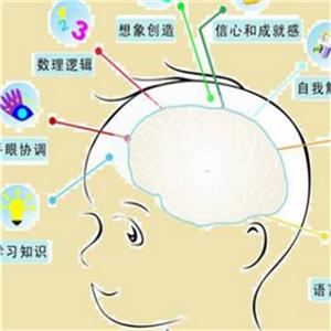 香港记忆学总会分布图