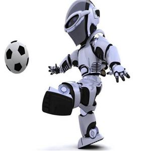 斯坦德机器人