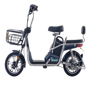 新曰电动自行车能源