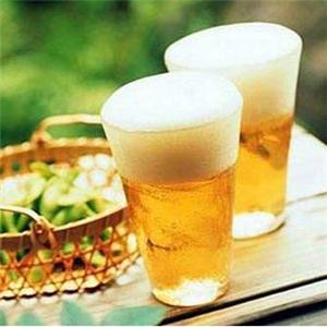 顽啤酒吧经典