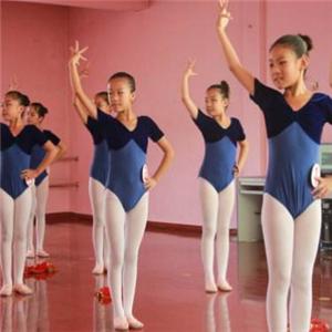 火鸟舞蹈教学