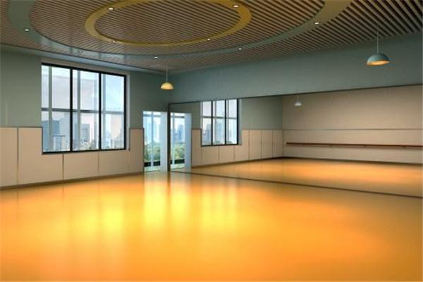 火鸟舞蹈艺术培训教室