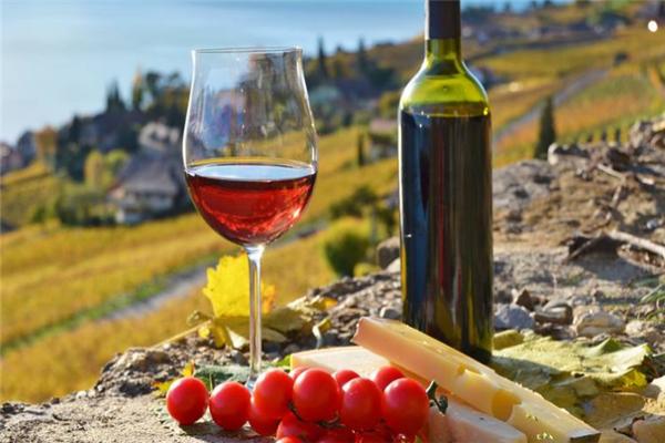 拉农庄园干红葡萄酒新鲜