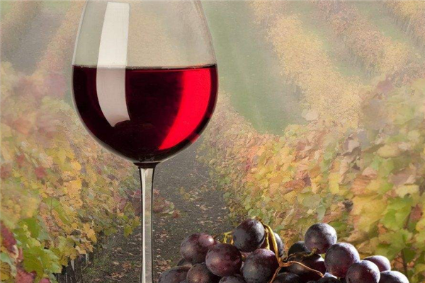 紫钟堡干红葡萄酒爽口