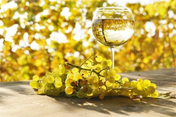 迪琴庄甜白葡萄酒品牌