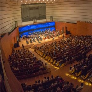 Symphony Music 交响音乐演奏