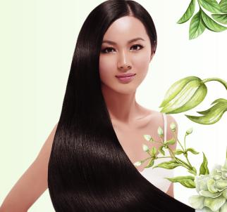 麸源茶麸养发堂优质