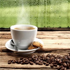 環洲綠島咖啡加盟