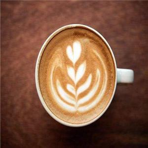 森绿咖啡叶子