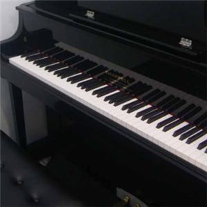 龚琛晨钢琴艺术中心展示
