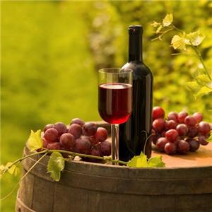 沐仙妮葡萄酒加盟