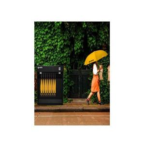 法瑞纳共享雨伞创业