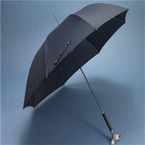 街借伞推进