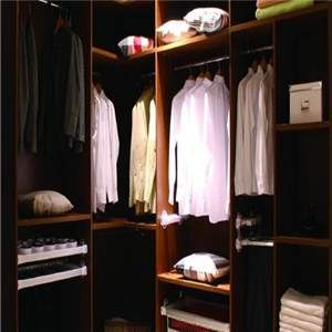 新标衣柜风格