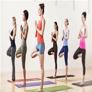 优伽瑜伽训练
