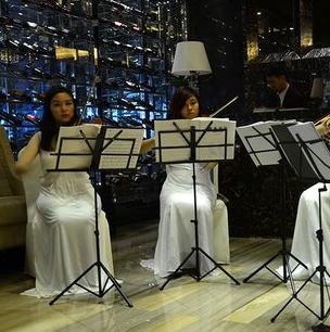 名師之生提琴培訓中心教育