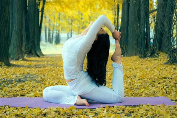 天瑜伽园品质