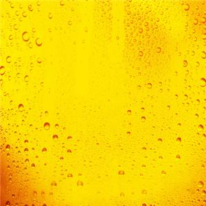 鲜酿啤酒屋纯酿