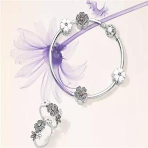 銀荷珠寶雍容