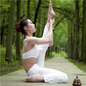 青青瑜伽会所经典