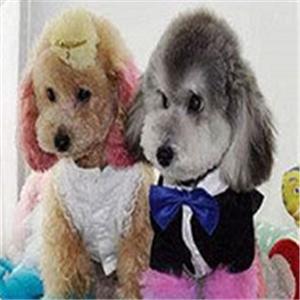 佩妮宠物生活馆品牌