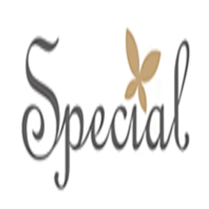 special飾品