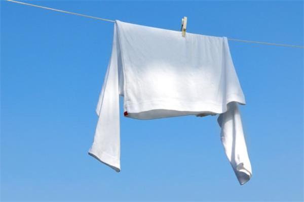 白象干洗衣服