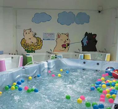 海豚啵啵婴童游泳馆大池