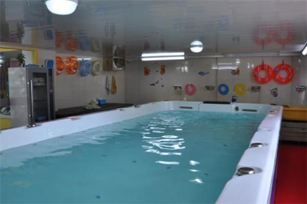 海豚啵啵婴童游泳馆店面