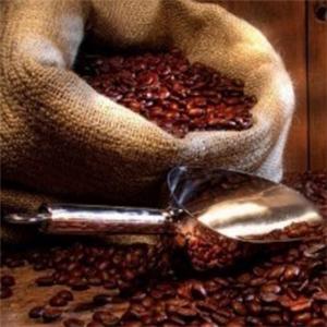 初馨咖啡品味