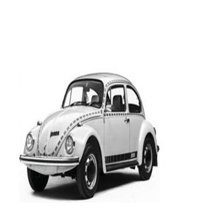 甲殼蟲汽車加盟