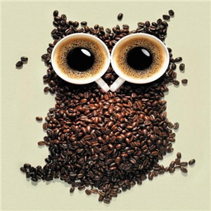 喵星人的猫咖啡招牌