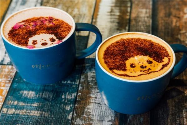 蒙奇奇咖啡产品