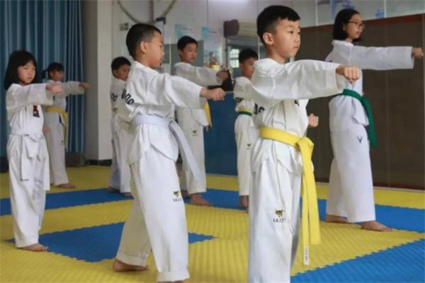 森磊跆拳道教育