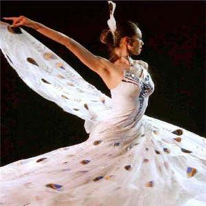 華彩舞蹈品牌