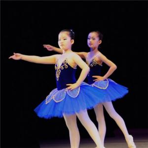 華彩舞蹈口碑